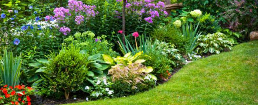 giardinaggio-verona-servizio