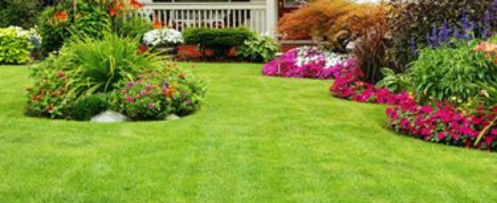 manutenzione-giardini-come-curare-il-giardino-di-casa_N2